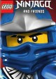 Go to record LEGO. Ninjago and friends.